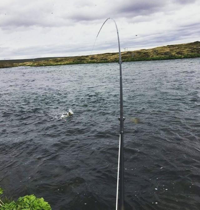Góð byrjun í Mývatnssveit