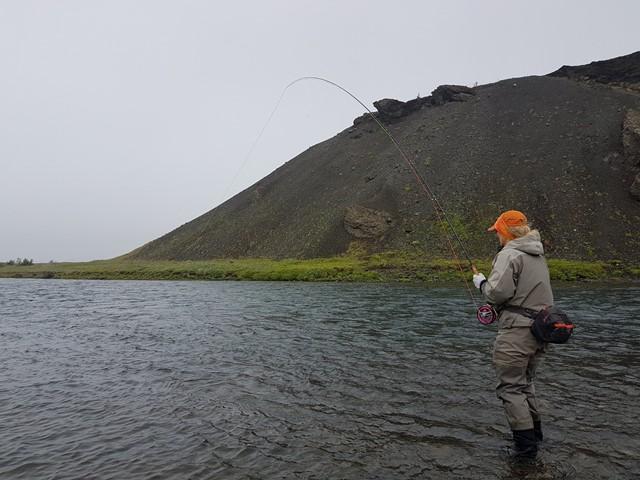 Stóra Laxá í Hreppum og sumarið 2019